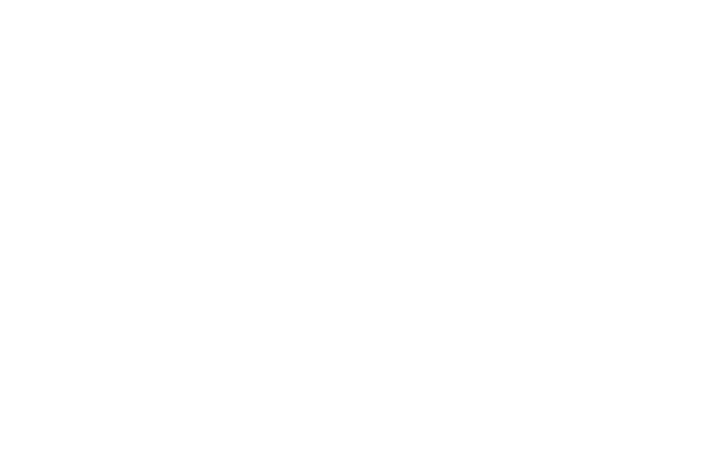 overland-gallery-has-russian